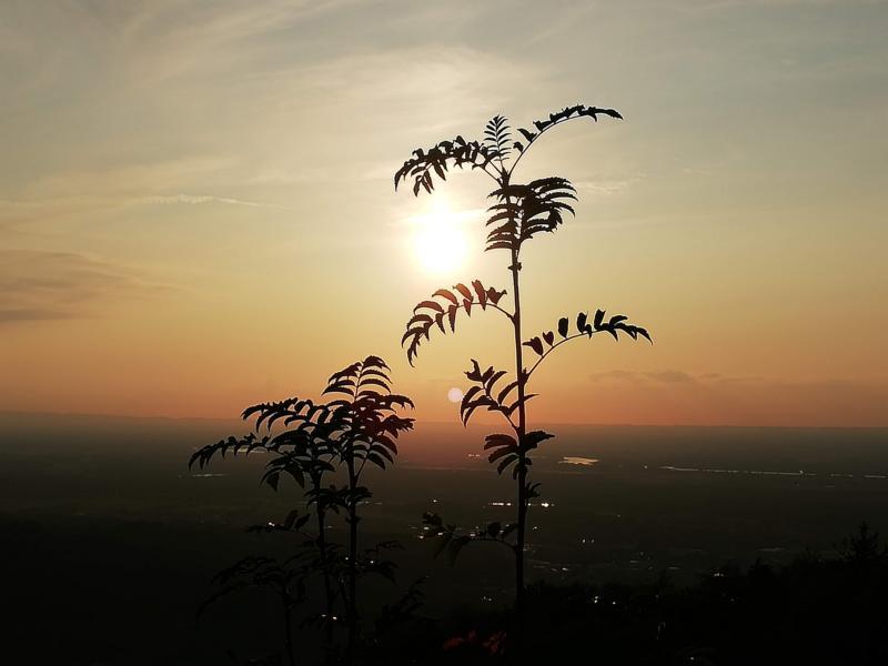 Herbst-Tag-und-Nachtgleiche